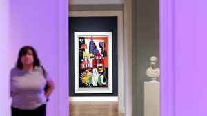 Norton Museum of Art's $100 million upgrade has ripple effects in South Florida [Video]