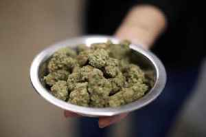 Michigan becomes first Midwest state to legalize recreational marijuana