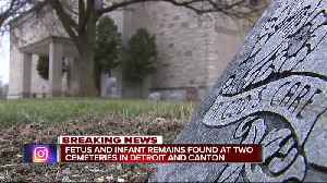 Dozens of fetuses, infant remains found after police raid on metro Detroit cemeteries [Video]