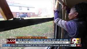 Working to do 'better' by kids in public housing [Video]