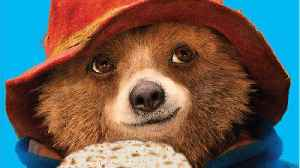 Fans Of 'Paddington 2' Fans Were Mad For It's Lack Of Nomination [Video]