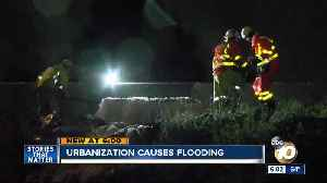 Urbanization could be causing more flooding in San Diego [Video]