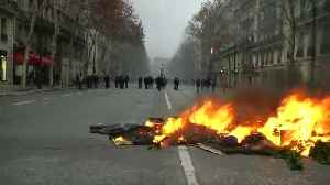 Cars and Christmas trees burn during Paris protests [Video]