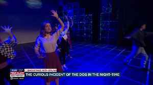 Backstage with Bruno at 'The Curious Incident of the Dog in the Night-time' [Video]