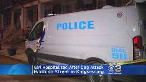 Police Officer, 9-Year-Old Girl Attacked By Dog In Kingsessing [Video]