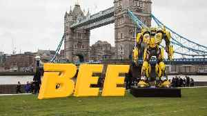 Early Reviews For 'Bumblebee' Movie Released [Video]