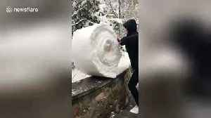 Man 'folds' snow on top of a wall into giant snowball [Video]