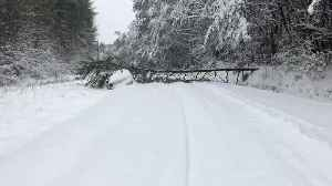 Tree Falls on Stranded Car During Winter Storm in Morganton, North Carolina [Video]