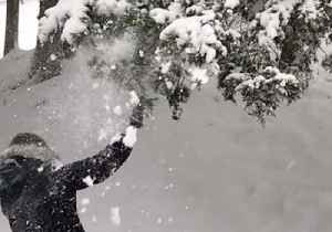 Major Snowstorm Blankets Southeastern States [Video]