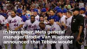 Mets GM Gives Big Update on Tim Tebow's Quest for MLB [Video]