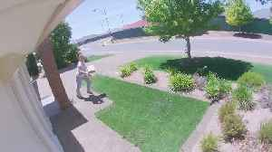 Woman Snags Package off Front Porch, Runs Off [Video]