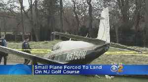 Small Plane Lands At N.J. Golf Course [Video]