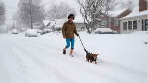 Winter Storm Power Outages Take Over Southeast U.S. [Video]