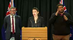 New Zealand leader apologizes to Millane family for daughter's murder [Video]