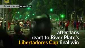 Riot police deployed as Argentinian soccer celebrations turn violent [Video]