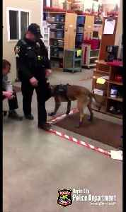 WEB EXTRA: South Dakota Police Dogs Hates Snow Boots [Video]