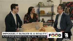 Can the Impossible Burger Save the World? [Video]