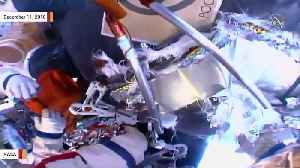 Space Station Crew Finds 'Small Black Dot' During Spacewalk To Inspect Mystery Hole [Video]