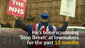 British man aims to stop Brexit one daily protest at a time [Video]