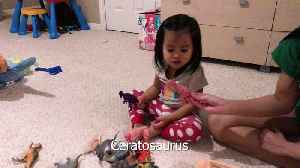 Brilliant 2-year-old names 22 dinosaurs in 2 minutes! [Video]