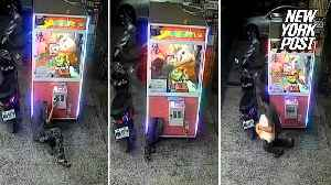 Flexible thief climbs into electronic claw game for stuffed prize [Video]