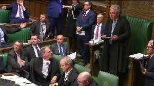 British MP vents his anger over vote delay by attempting to steal ceremonial mace [Video]