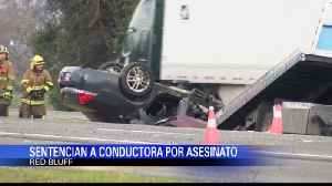 Sentencian a Conductora Suicida [Video]