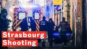 Strasbourg Shooting: Gunman At Large After Opening Fire At Christmas Market Leaving Multiple Fatalities [Video]