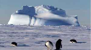 Antarctic Scientists Are About to Drill Into One of the Most Isolated Lakes on Earth [Video]
