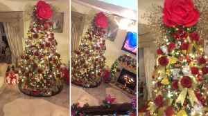 A tree as old as time! Crafty grandma spends a year creating magical Beauty and the Beast Christmas tree for Disney-mad granddau [Video]