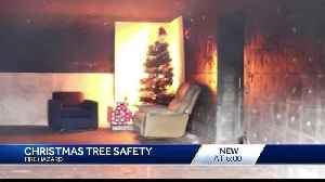Firefighters urge Christmas tree safety [Video]