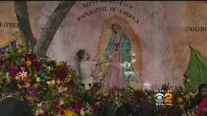 SoCal Catholics Honor The Virgin Of Guadalupe [Video]