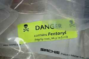 FDA Says Fentanyl Is the Deadliest Drug in the United States [Video]