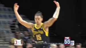 Gray Finding Groove with Mad Ants [Video]
