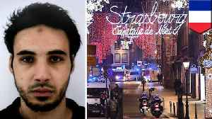 Strasbourg shooting suspect at large after killing three [Video]