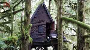 Man Who Kept Secret Child Porn In This Fairy Tale-Style Treehouse Gets Jail Time [Video]