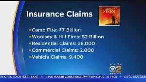 Insurance Losses From November Wildfires Top $9 Billion [Video]