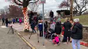 Reporter Update: Squirrel Hill Students Say Enough To Violence At Hope Tree Dedication [Video]