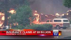 Insurance Claims from California Wildfires Hit $9 Billion [Video]