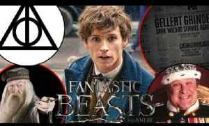 28 Fantastic Beasts And Where To Find Them Easter Eggs & References [Video]