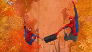 'Spider-Man: Into the Spider-Verse:' Why It's a Can't-Miss! [Video]