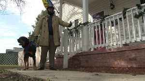 Homeowner Uses `Bait Box` with Unpleasant Surprise to Fight Against Porch Pirates [Video]