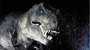 'Jurassic Park's' T-Rex Official Name Revealed [Video]