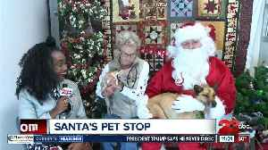 Santa visits shelter pets in Lebec [Video]