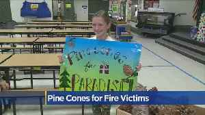 Elementary School Student Sells Pine Cones For Camp Fire Victims [Video]
