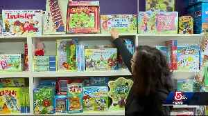Local toy stores fill vacancy left by Toys R Us [Video]