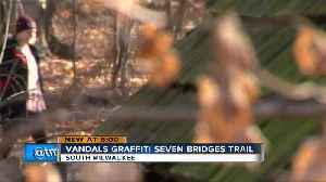 Locals upset over graffiti at South Milwaukee trail [Video]