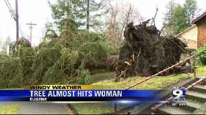 Eugene woman almost hit by falling tree [Video]