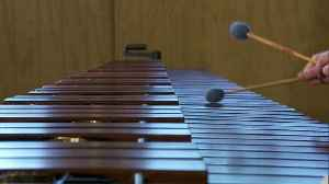 The music of marimbas [Video]