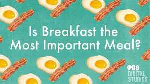 Is Breakfast the Most Important Meal? [Video]
